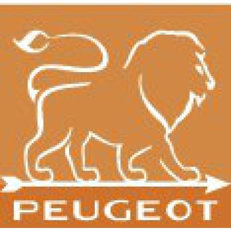 Peugeot Saveurs d'épices